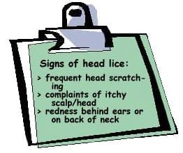 Head lice signs