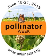 Pollinator Week 2015
