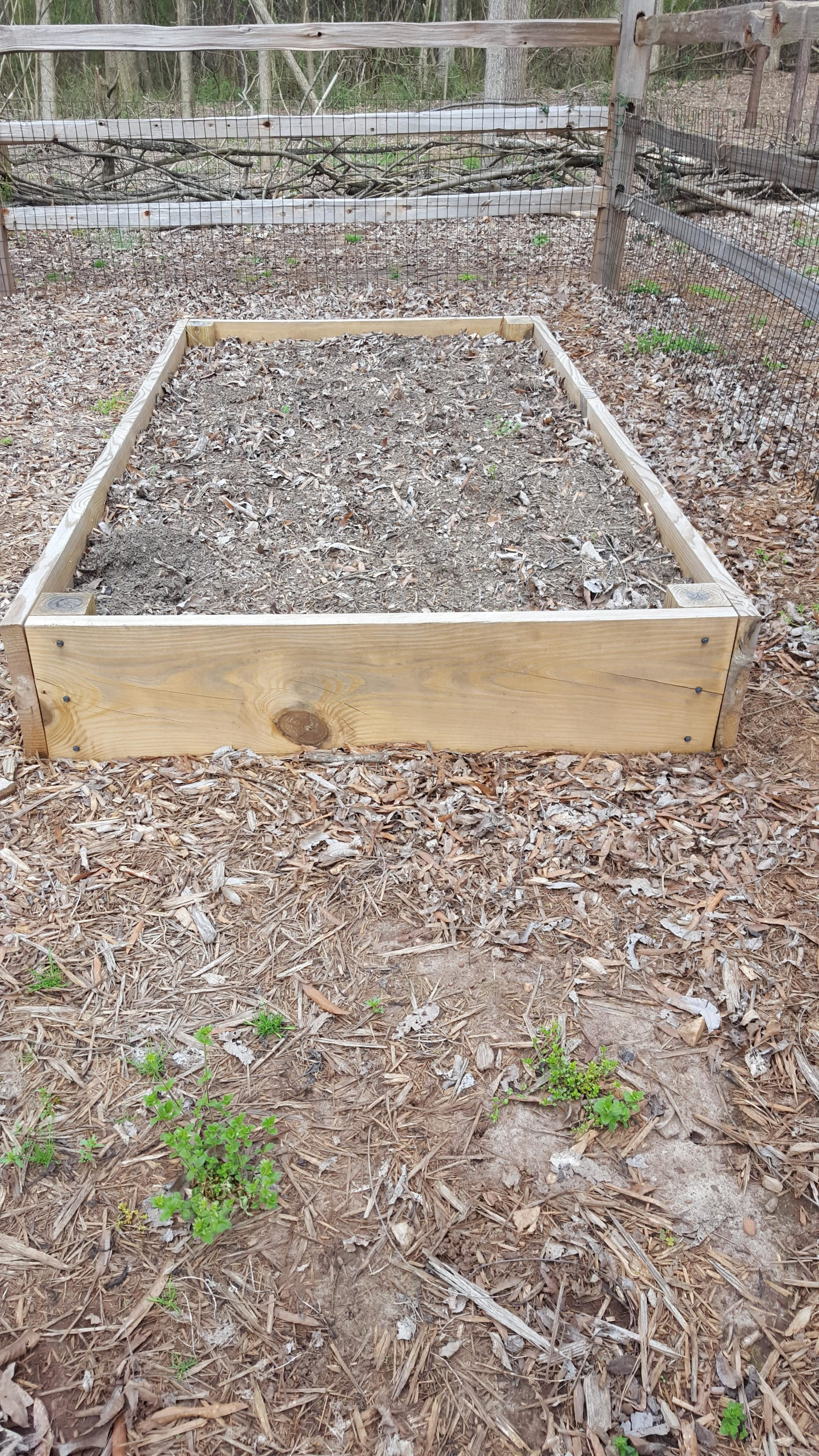How much soil do you need to refill your raised beds?-A Guest Post by Steve Pettis