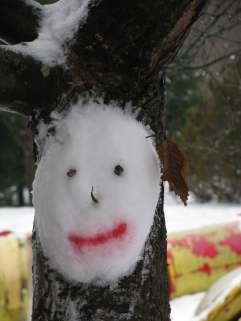 Sniego kaukes (5)