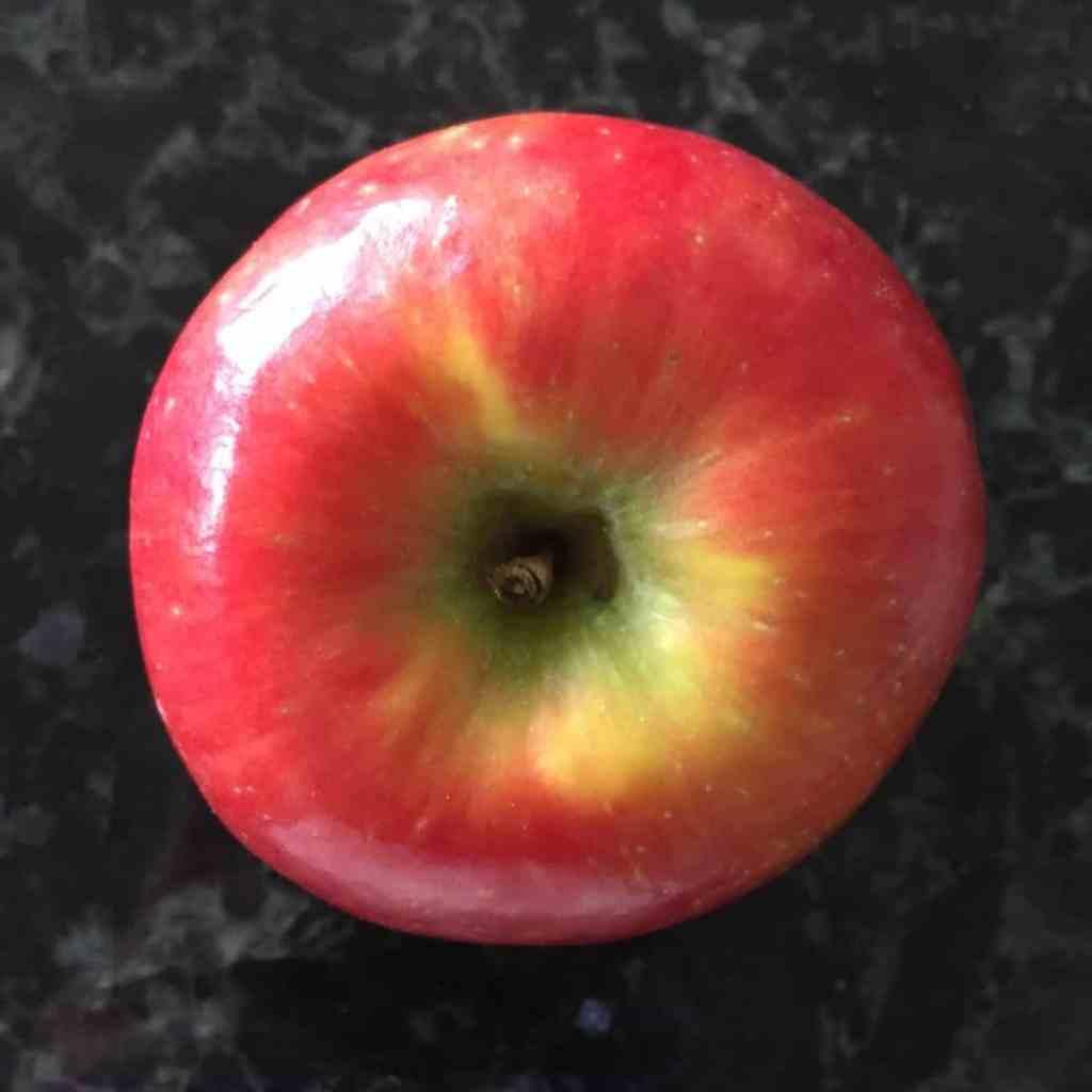 a sugarbee apple