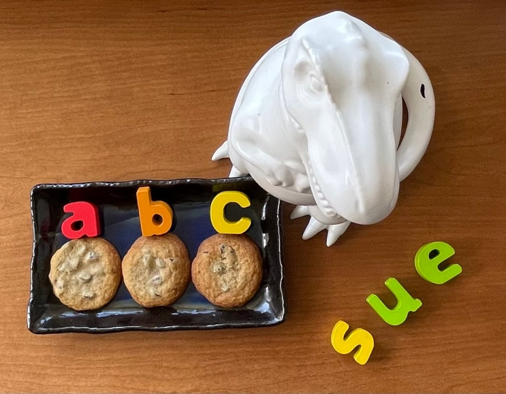 a plate of chocolate chip cookies labelled with letters a to c and a T rex cookie jar named sue.