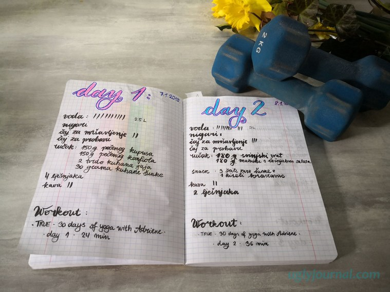 How journaling can help with your weight loss 2 - uglyjournal.com