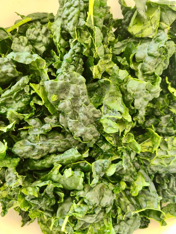 Vegan Lacinato Kale Salad Recipe
