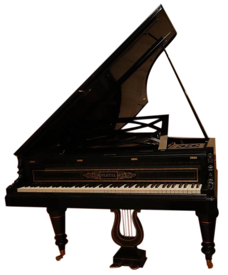 Pleyel n 35876 Parigi 1863
