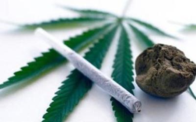 Как быстро вывести марихуану из организма - Угодие