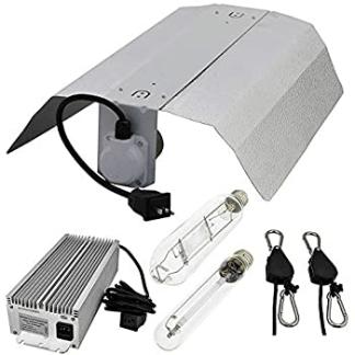 600w light kit