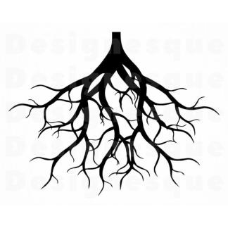 Root Stim/Boost
