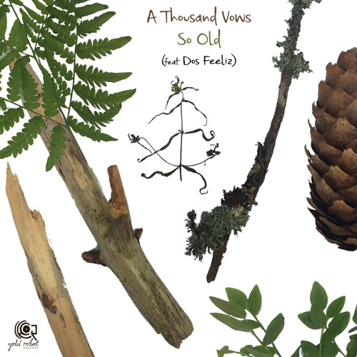 "A Thousand Vows – ""So Old"" feat. Dos Feeliz"