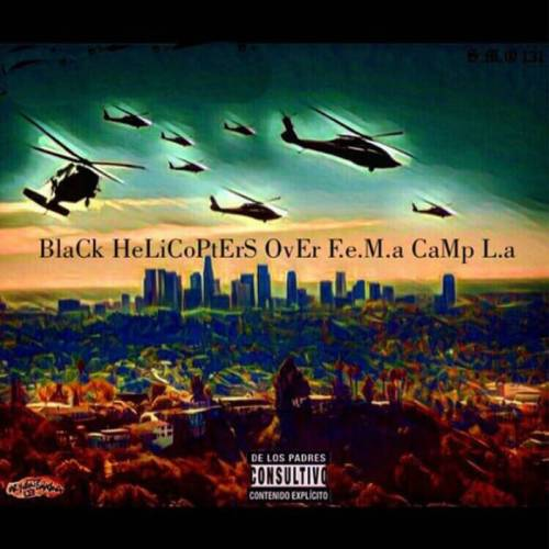Reindeer - Black Helicopters Over FEMA Camp L.A.