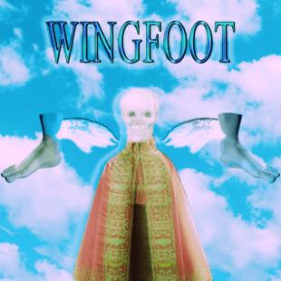 noah23-wingfoot