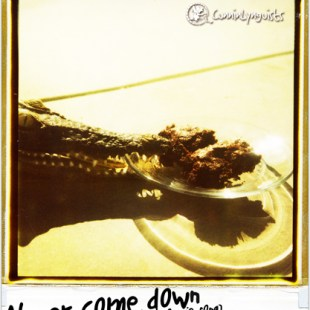 cunninlynguists-never-come-down-the-brownie-song-audio