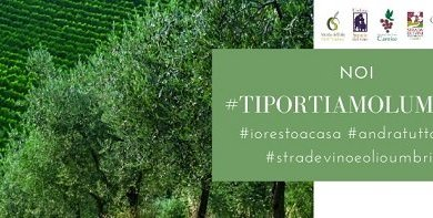 Photo of UMBRIA – IL COORDINAMENTO DELLE STRADE DEI VINI E DELL'OLIO  DA' VITA AL VIDEO CONTEST  #TIPORTIAMOLUMBRIA