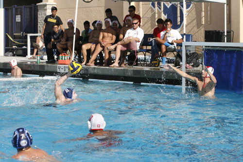 Water Polo Captains Plan to Place Team on Top