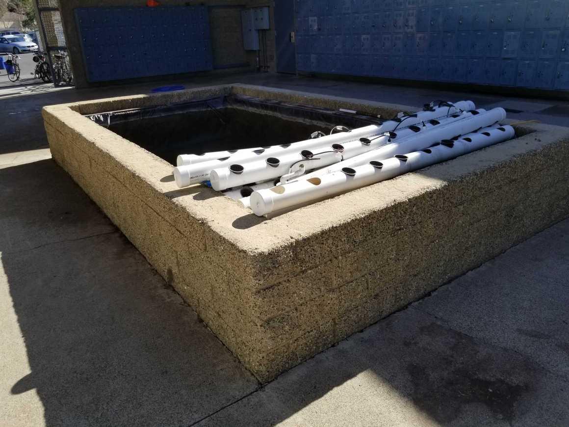 Aquaponics Project halted amid construction