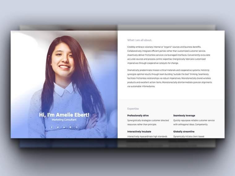 Online Resume Free Resume Template Best Resume Template