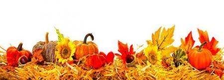 herfstbanner