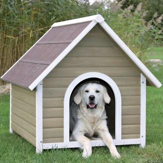 hondenhok-maken-bouwtekening