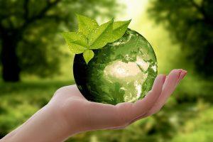 samenwerken met Moeder Aarde uitjebewust