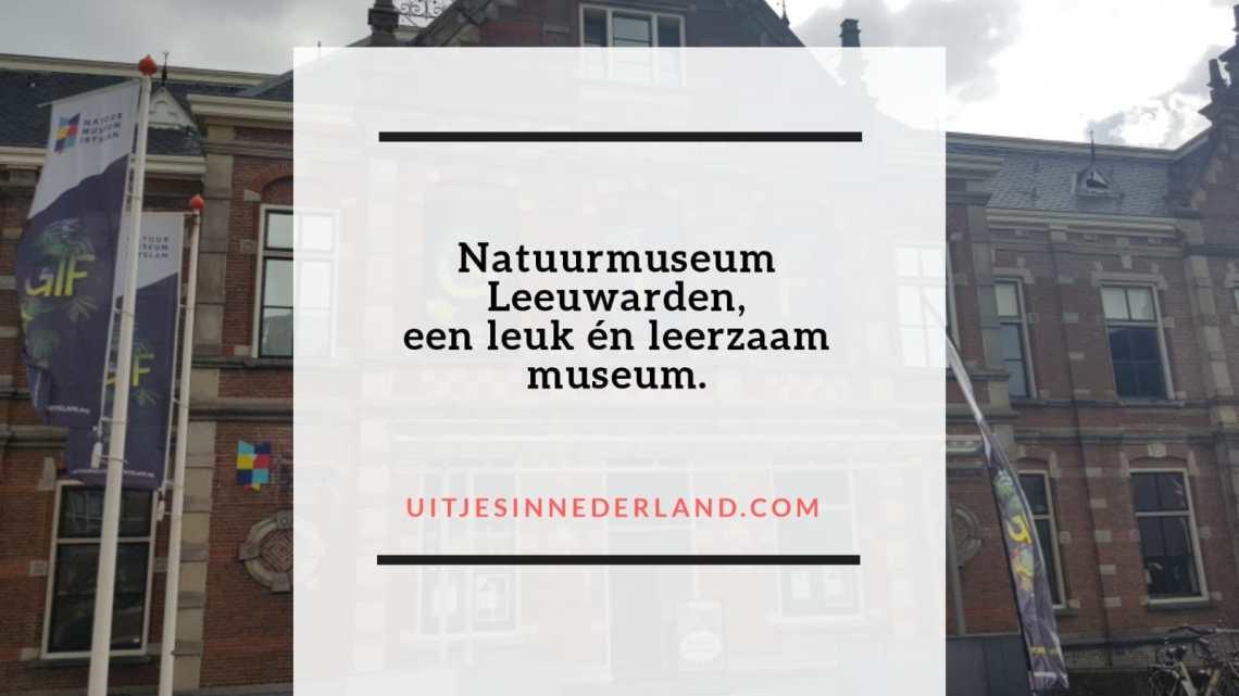 Natuurmuseum Leeuwarden, een leuk én leerzaam museum.