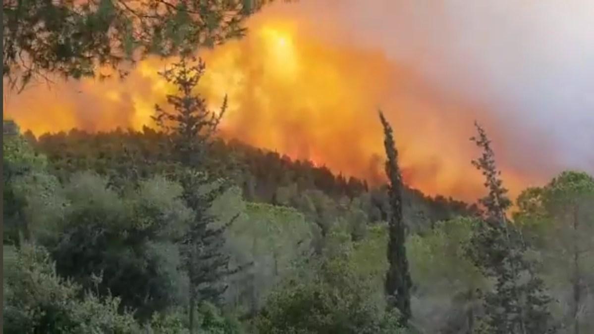 Dedi Szimchi: 88 tűzoltó csapat folytatja az oltást; remélem és hiszem, hogy befejezzük   Új Kelet online