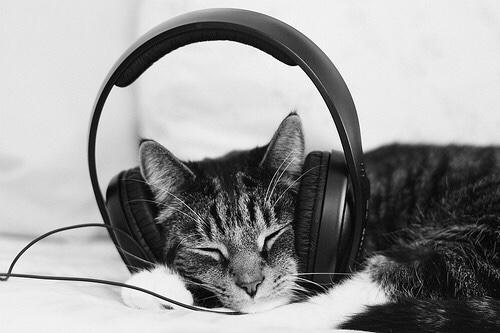 Új Kelet Live Podcast – éjszakai hírek   Új Kelet online