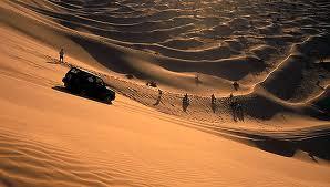 A sivatag bolondja