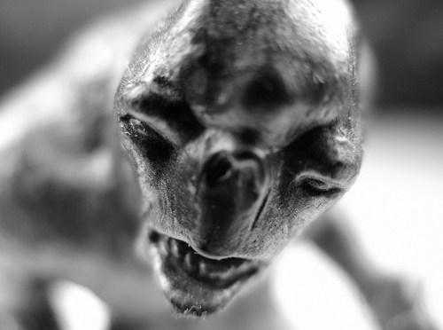 Trollok, skandinávok