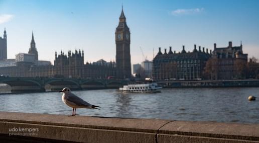 20171126-London-20170124-142527-SAM_7520