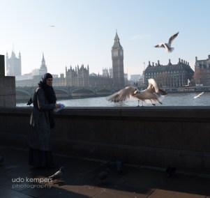 20171126-London-20170124-142601-SAM_7521