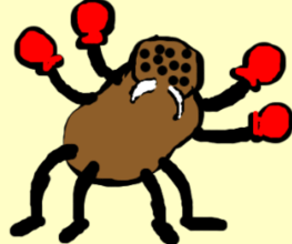 Spider Wearing Boxing Gloves