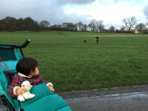 hampstead_heath2