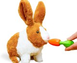 Soft Play Rabbit Toy