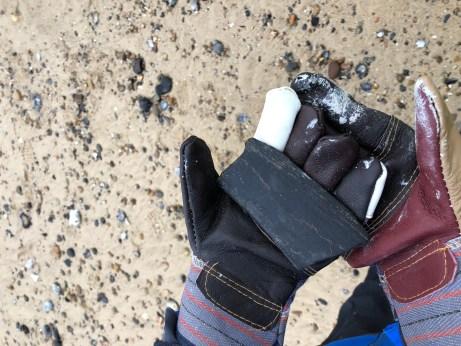 Large bone found by Rachel Fuller-Field