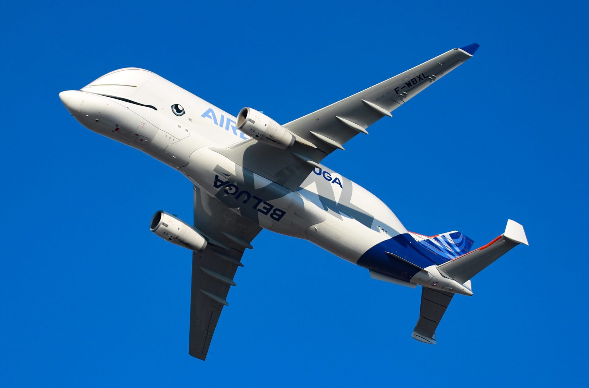 The BelugaXL showing off its whale characteristics (Image: Aviation Media Co.)