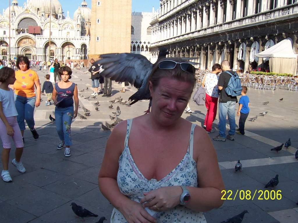 Venice's pigeons