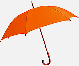 offshore umbrella companies
