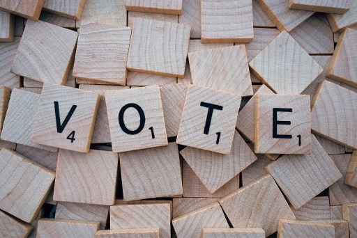 picture with word vote written on it