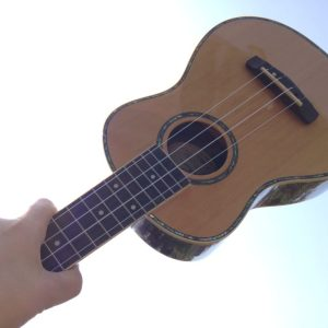 uke in the air