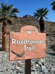 Road Runner Trail Sign