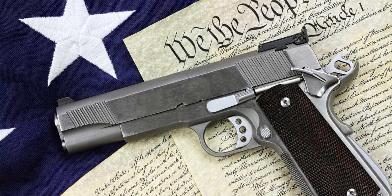 Second Amendment Seminar Dubbed a Political Ploy