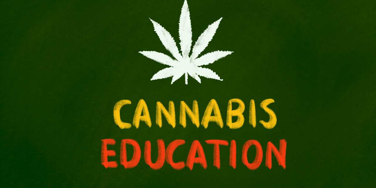Training Available for Cannabis Industry Work