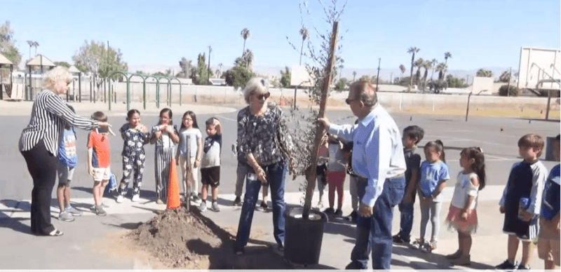 Pupils, City Council Plant Tree for Clean Air Day