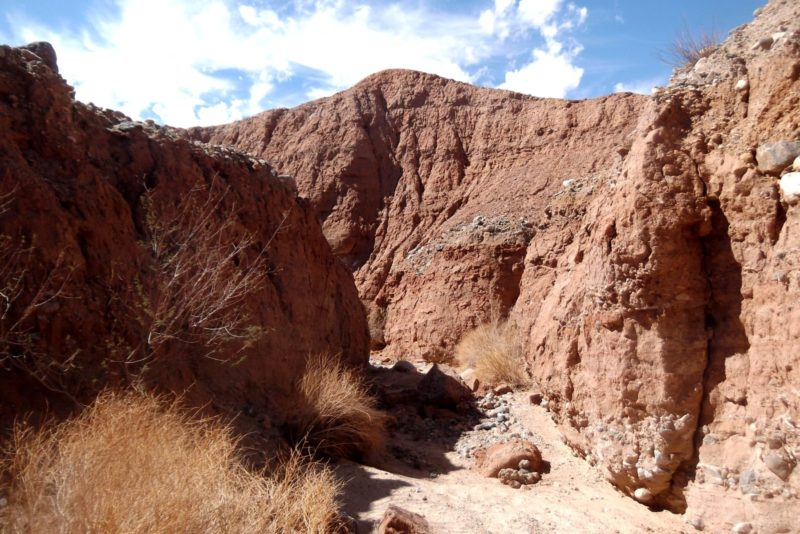 Hiking, Exploring the Utah Canyons Trail
