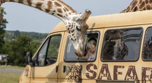 West Midland Safari Park and Hotel Deal from just £109 per family