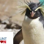 London Zoo Ticket Offers – Save 17% Off Day Trip Packages