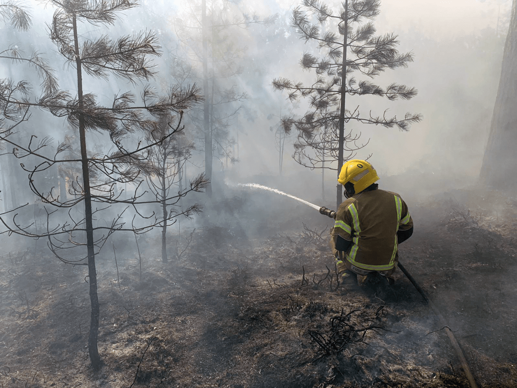 At the height of the Wareham Forest fire response, 150 firefighters were at the scene.