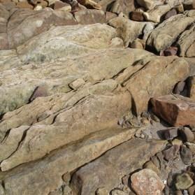 Bedding plains in sandstone