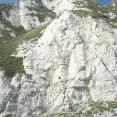 High chalk cliffs