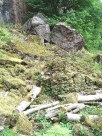 Boulders with moss